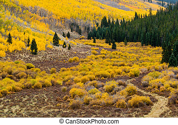 Colorado Fall Mountain Landscape