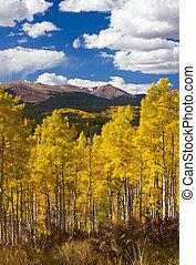 colorado, felsige berge, herbst, landschaftsbild