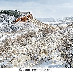 colorado, foothills, em, neve fresca
