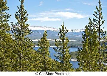 Colorado Forestry - Scenic Colorado Landscape
