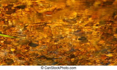 golden stream - Colorado, golden stream, abstract background