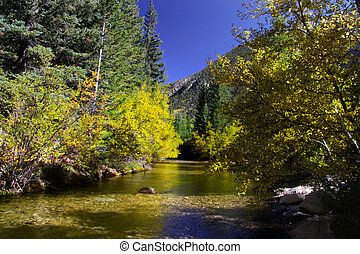 Fall colors against the mountains and reflection in the river