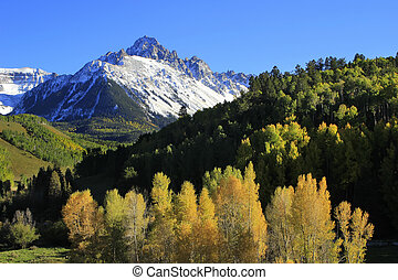 colorado, nemzeti, uncompahgre, erdő, sneffels, felmegy