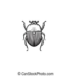 Colorado potato beetle hand drawn sketch icon.