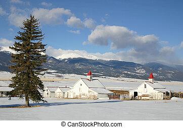 Colorado Ranch in Winter