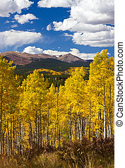 Colorado Rocky Mountains Fall Landscape with Mountains and...