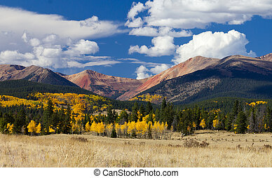Colorado Rocky Mountains in Fall - Fall aspen forest in the...