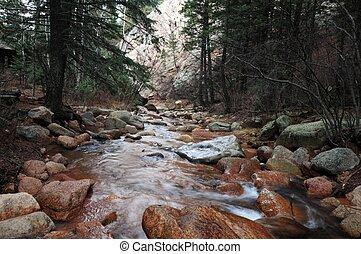 Colorado Springs Mountain Forest. Colorado Springs, USA