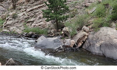 A fresh clear water mountain stream flows in a rapid pace along a rocky creek at the bottom of a stony hill. Summer foliage in a rocky slope above a flowing freshwater river in the Rocky Mountains.