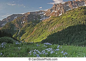 Colorado summer in the San Juan Mountains - Colorado ...