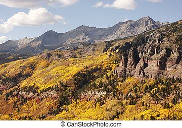 colorado, telluride, színpadi, nemzeti, uncompahgre, erdő