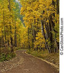 Colorado's Ophir Pass Road