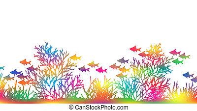 colorare, corallo