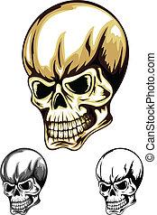 colorare, cranio