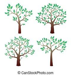 colorare, leafs., vettore, albero