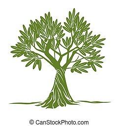colorare, oliva, vettore, albero.