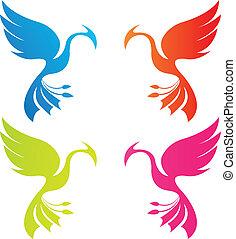 colorare, phoenix