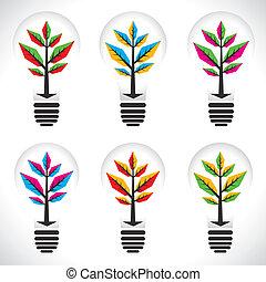 colorare, pianta lampadina