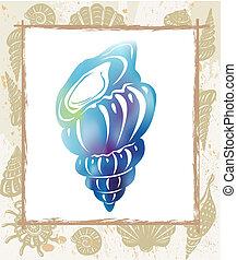 colorare, seashell, cornice