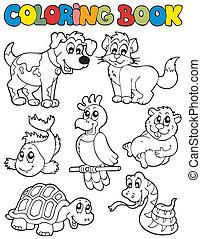 coloration, 2, livre, animaux familiers