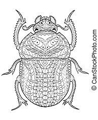 coloration, adultes, égyptien, scarabée, vecteur, coléoptère
