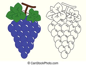 coloration, book., activité, children., grapes., préscolaire