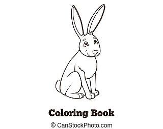 coloration, lièvre, dessin animé, vecteur, forêt, livre animal