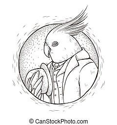 coloration, monsieur, page, perroquet