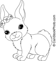 coloration, page, lapin