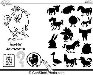 colore cavalli, gioco, libro, uggia