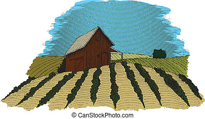 colore fattoria, scena