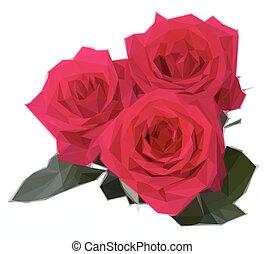 colore rosa scuro, tre, rose