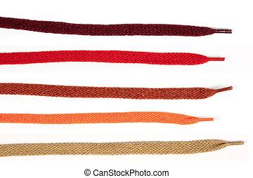 coloreado, colección, cordones, shoes, algodón
