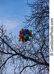 colored balloons stuck in the branches of a tree, Prague, Czech Republic