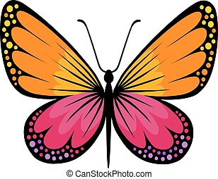 Colored butterfly logo