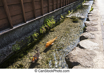 Colored carp swim a waterway between wall and road in...