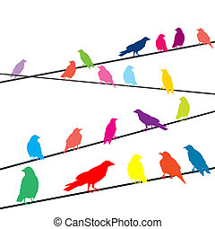 Colored crows on wires