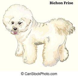 Colored decorative standing portrait of dog Bichon Frise vector illustration