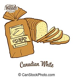 Colored drawing of Canadian White bread. Vector illustration of White food, usually known in Canada. Colored Bread sketches.