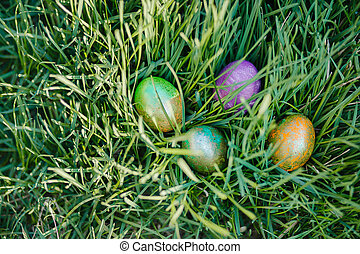 colored Easter eggs on the grass