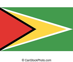 Colored flag of Guyana