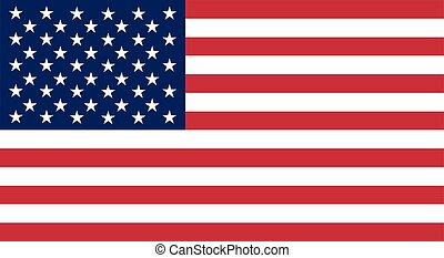 Colored flag of the USA