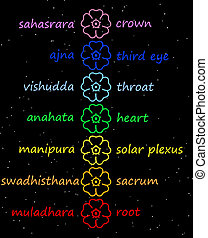 Colored flowers in chakra column with their names in night...