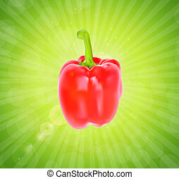 Colored Fresh Sweet Pepper Vector Isolated on White Background.
