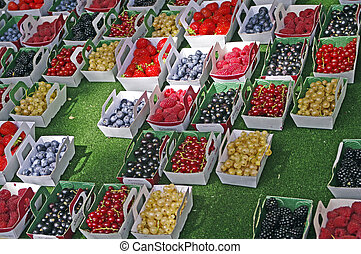 colored fruits in a market