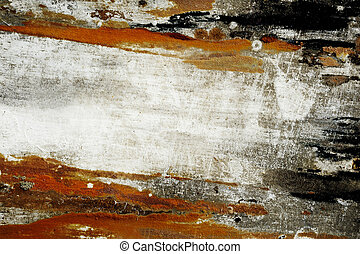 Colored fungus on wooden background