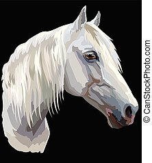 Colored Horse portrait - Colored portrait of white Orlov...