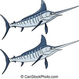 Colored illustration of a marlin fish. Isolated vector objects.