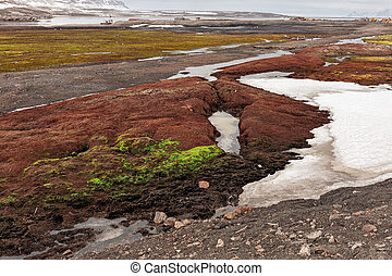 Colored land in Ny Alesund, Svalbard islands - Colored land...