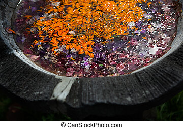 colored leaves with drops of dew in the water